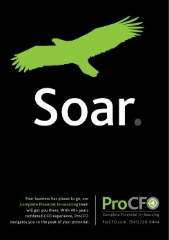 ProCFO Eagle Ad copy